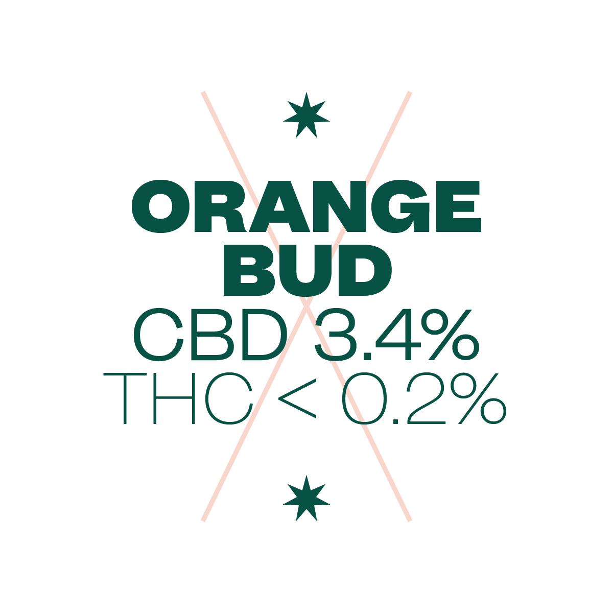ligne verte bandeaux orange bud site px px