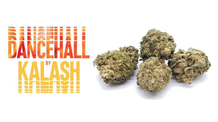 """DANCEHALL"" By KALASH Ligne Verte – CBD Products"