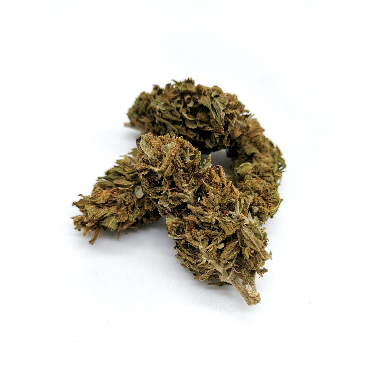 ligne verte fleurs carmapunch